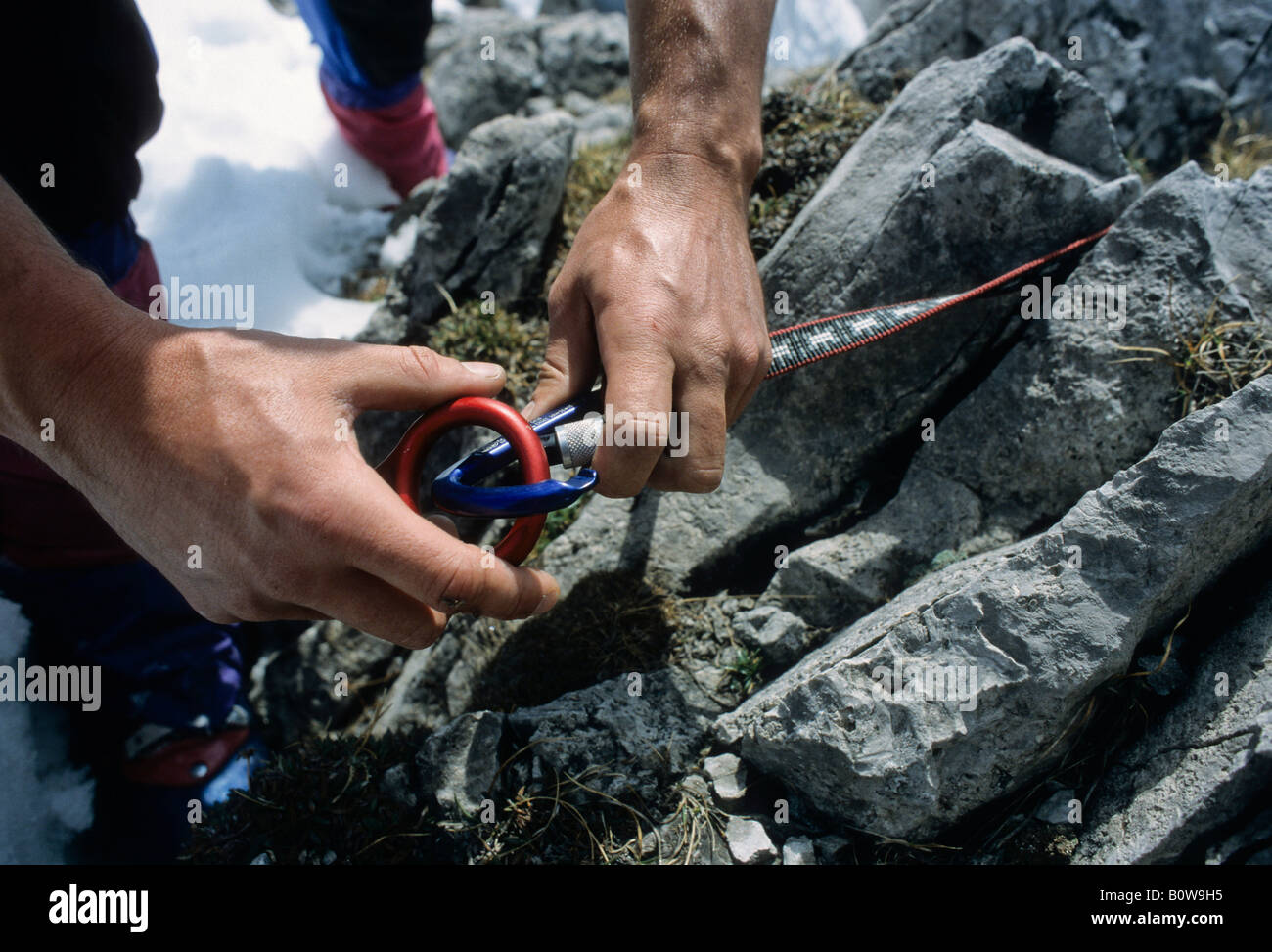 Male hands hooking a figure eight descender into an aluminium carabiner tied to a rock with a loop of cord - Stock Image