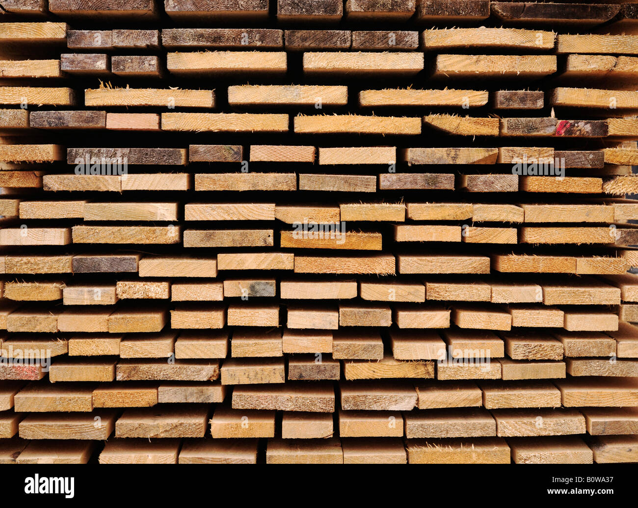 Stacked wooden boards, building material, view of the ends, image-filling - Stock Image
