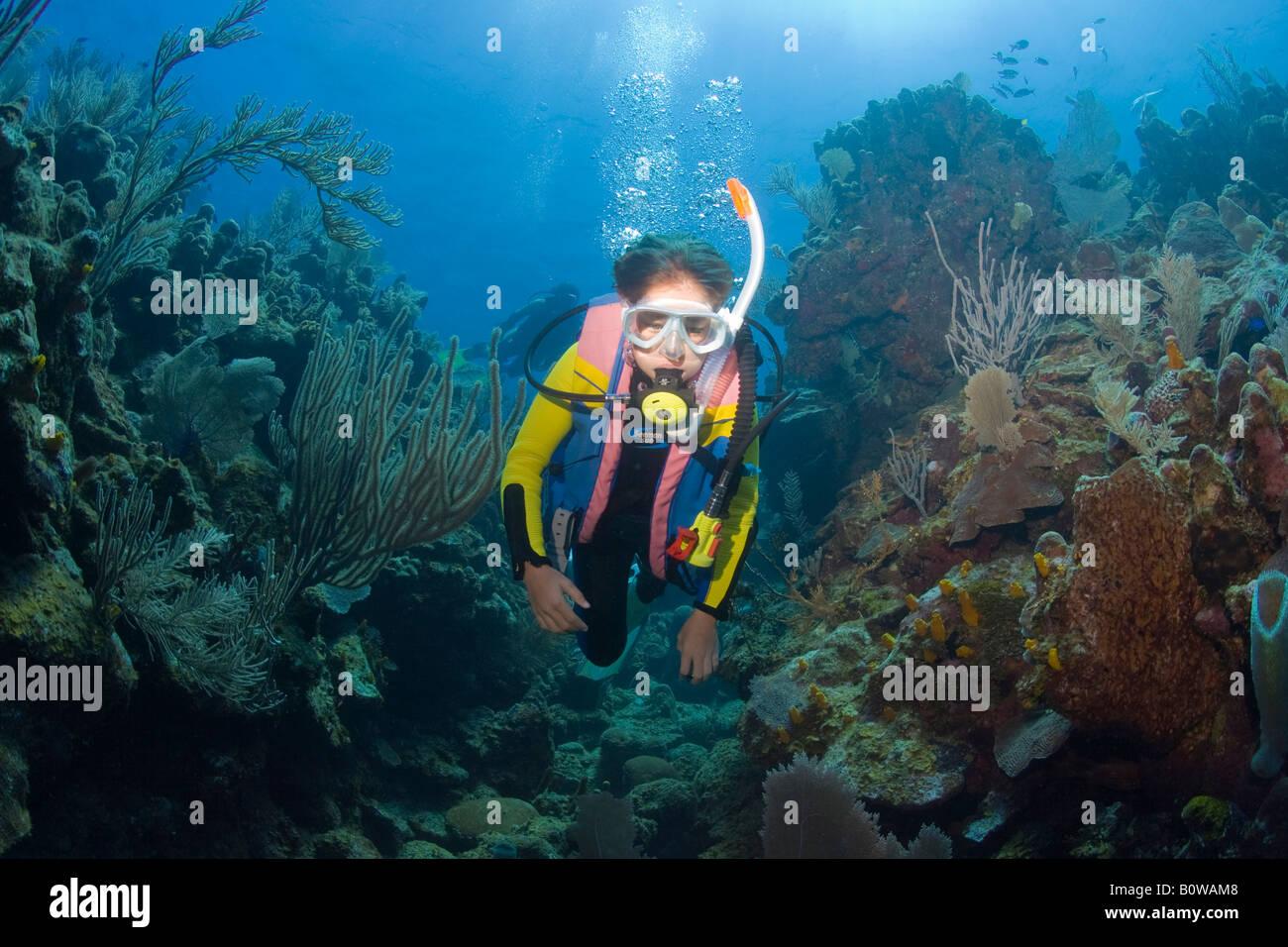 Mother and daughter scuba diving, Roatan, Honduras, Caribbean - Stock Image