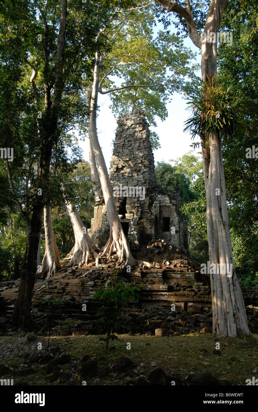 Preah Palilay, Khmer temple surrounded by tall trees, Angkor Thom, Siem Reap, Cambodia, Southeast Asia Stock Photo