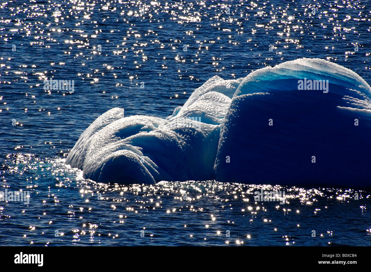 drifting ice on glimmering water surface, Antarctica - Stock Image