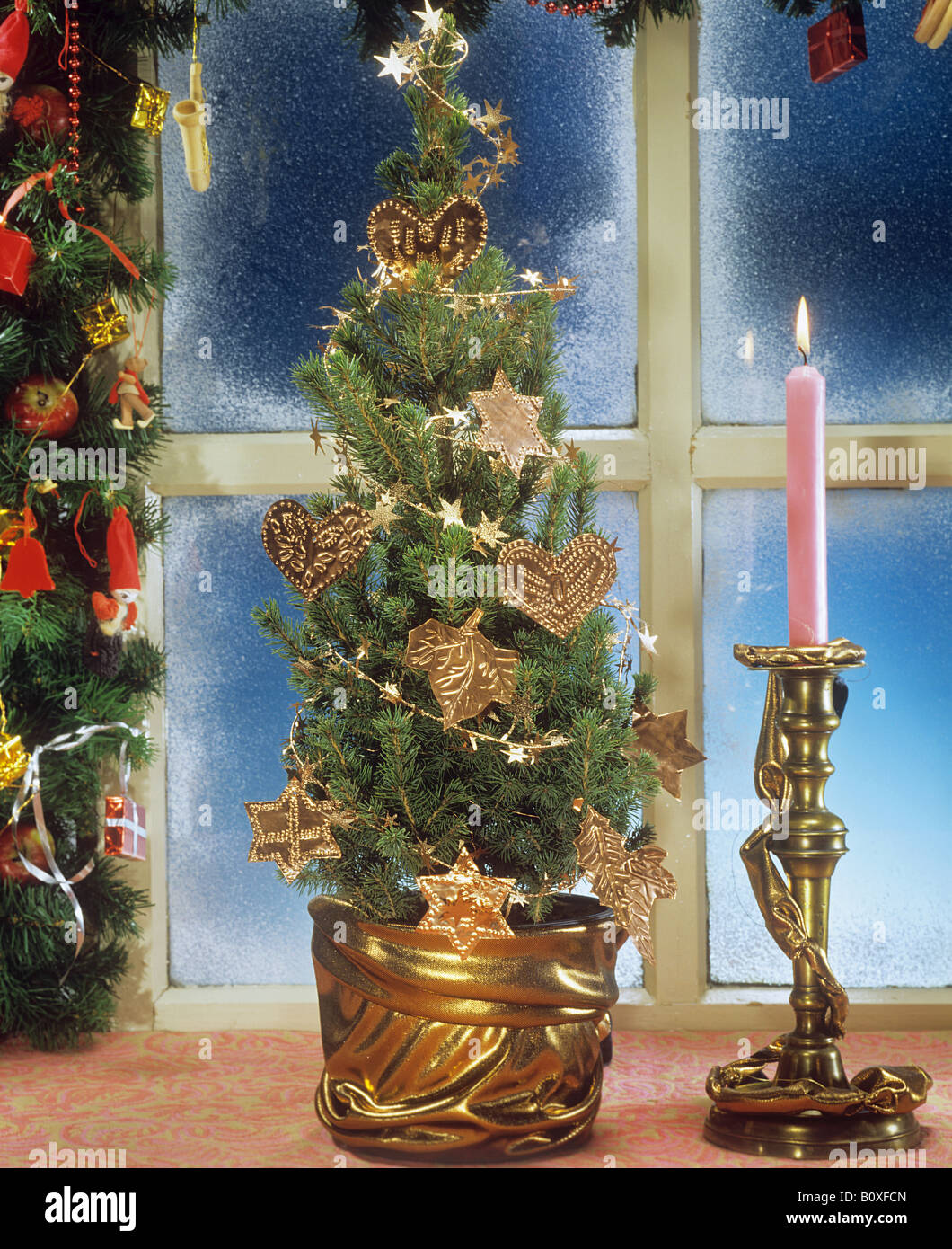 Christmas tree in pot - Stock Image