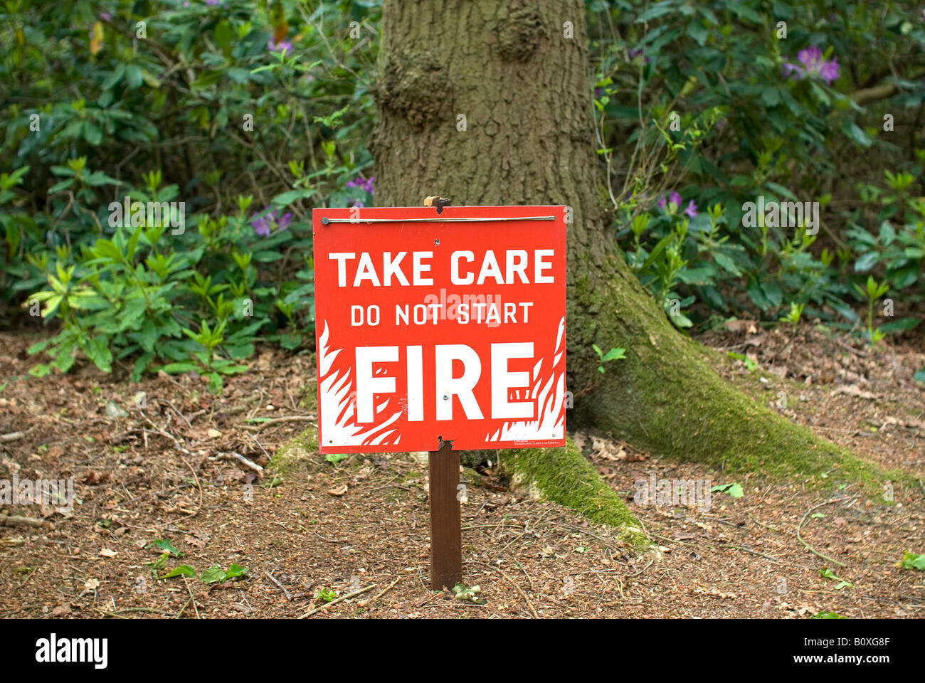 take care fire warning sign in norfolk woodland - Stock Image