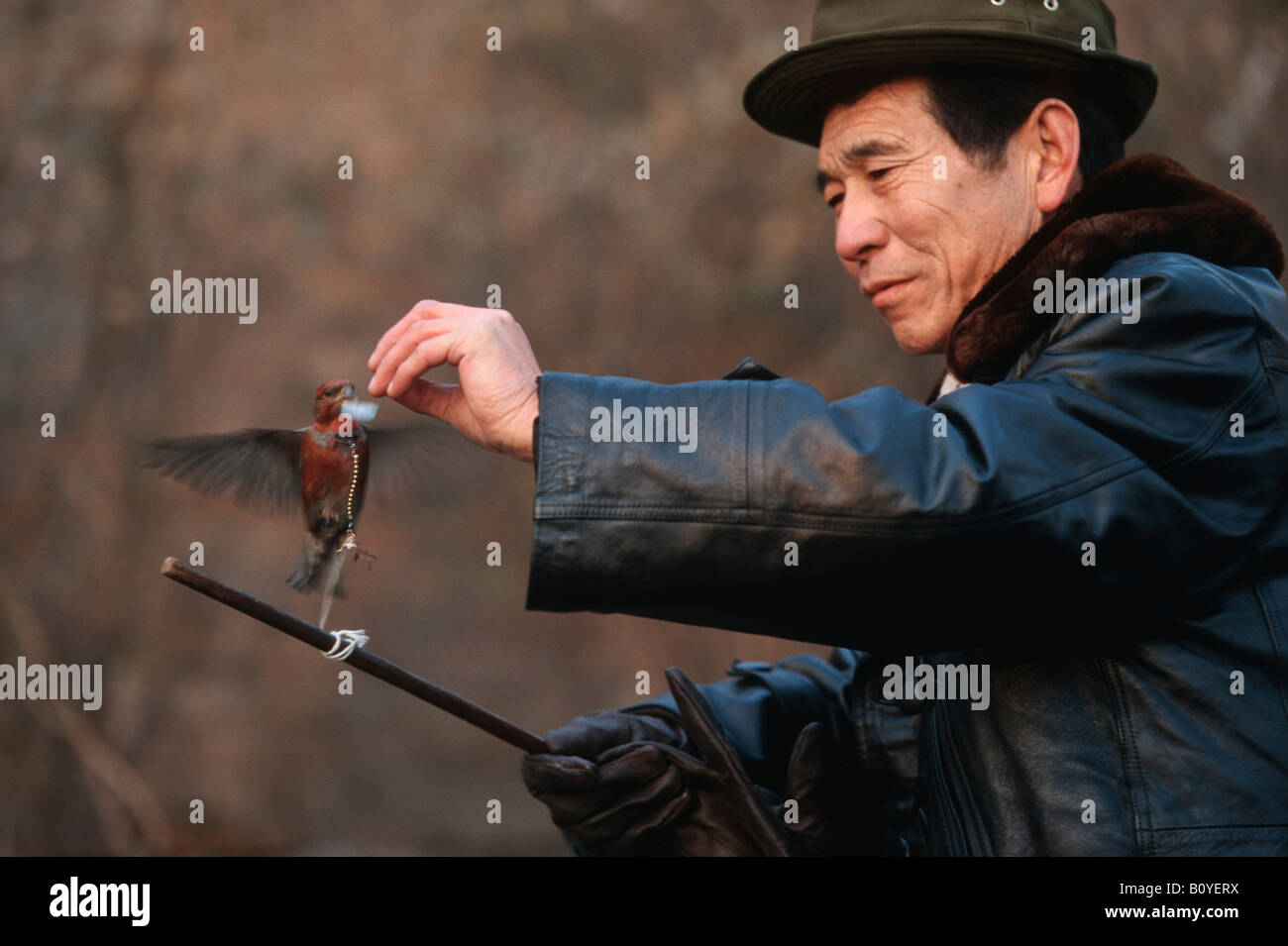 man with bird, holding a coin in the bill, China, Beijing - Stock Image