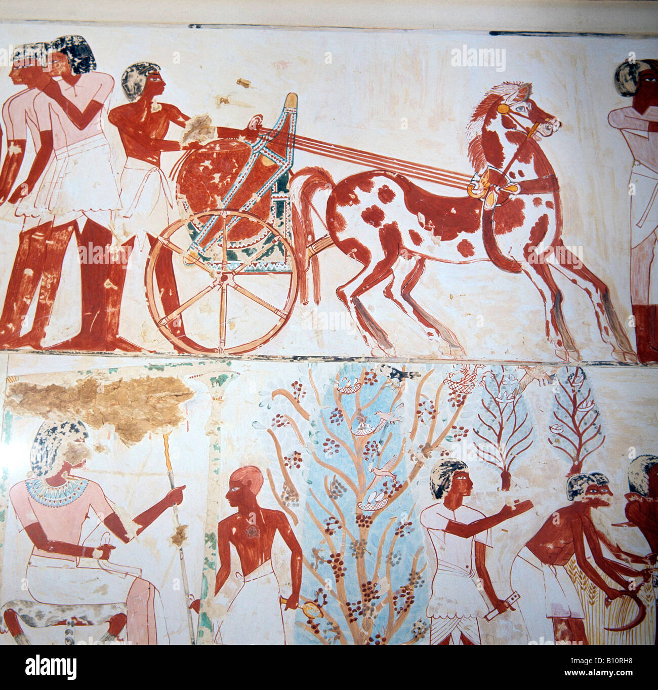 Tomb of Menna Thebes Chariot Egypt  Copyright: AAA Collection Ltd - Stock Image