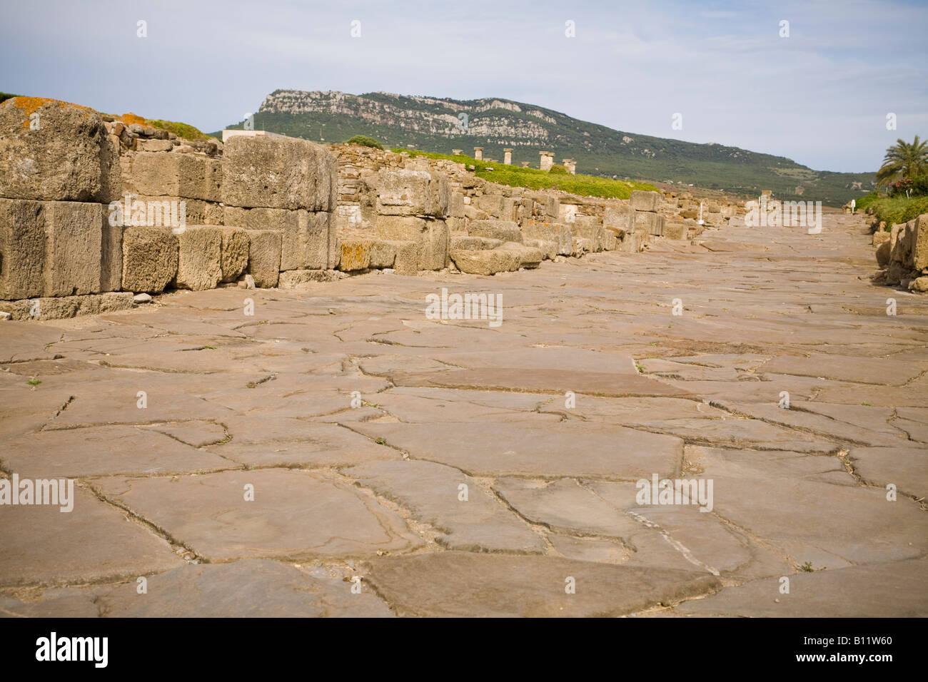 Decumanus Maximus The Main Street In The Roman Archaeological Site