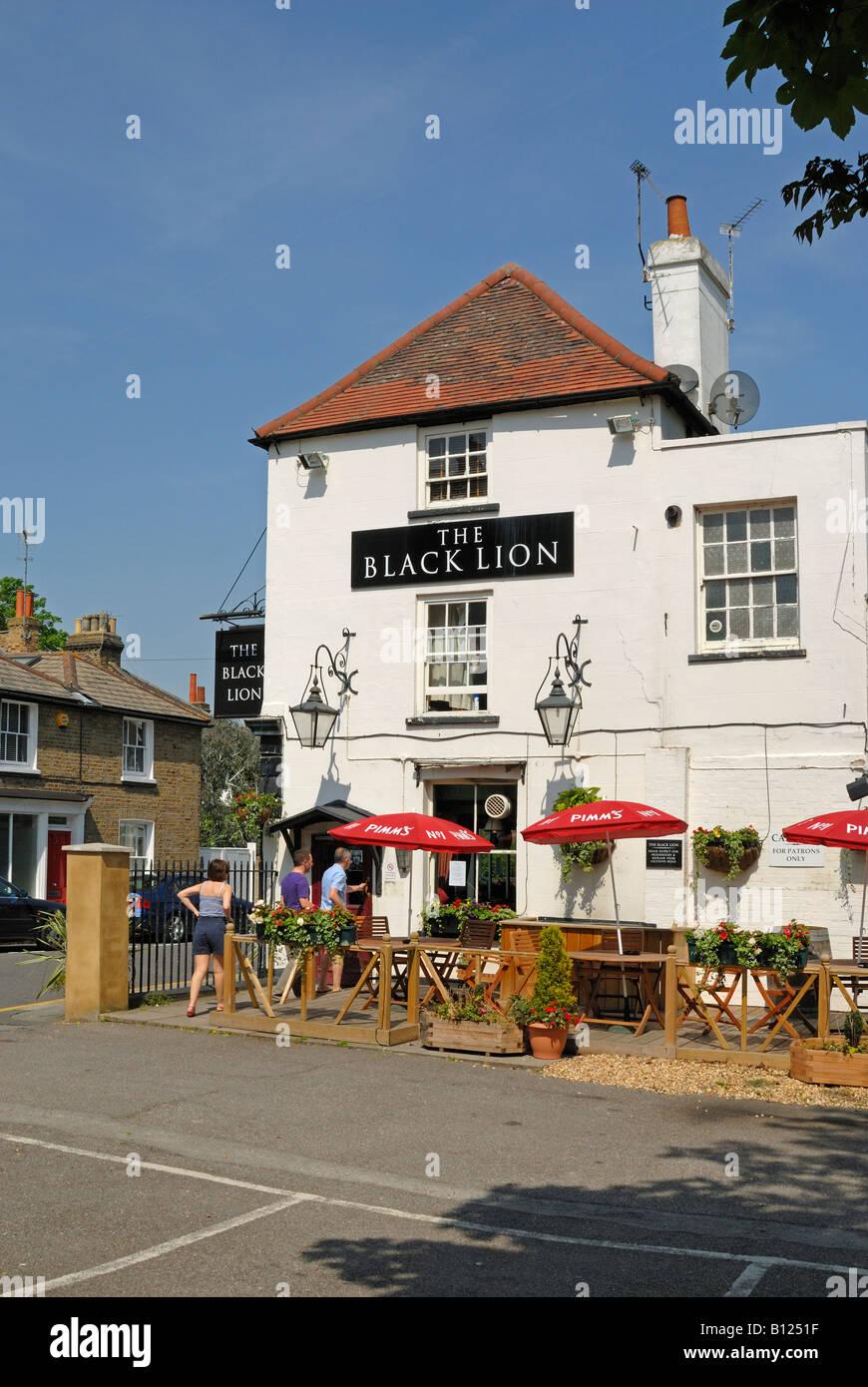 The Black Lion pub, Chiswick riverside - Stock Image