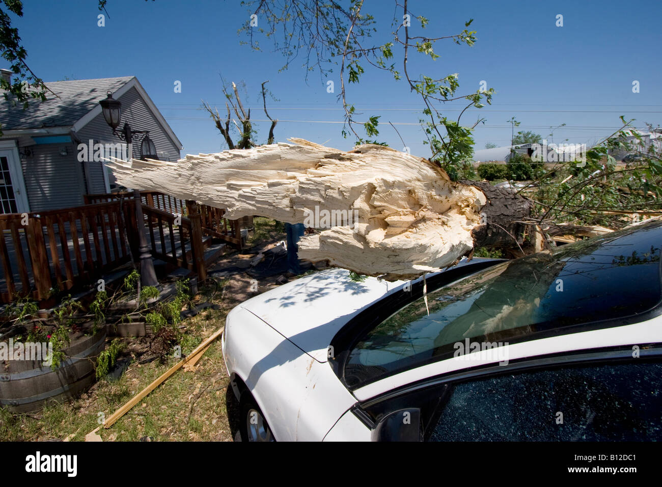 A tree fallen on a car at Bill Foster's home at 2165 East 39th Street in Kearney Nebraska May 30 2008 Stock Photo