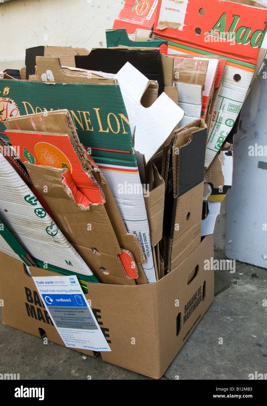 Cardboard for recycling - Stock Image