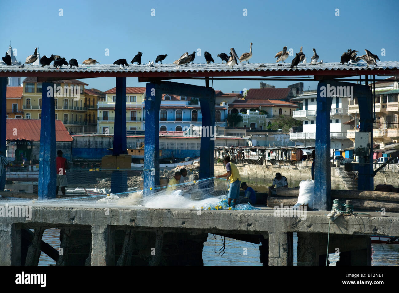 FISH MARKET QUAY CASCO VIEJO SANTA ANA PANAMA CITY REPUBLIC OF PANAMA Stock Photo