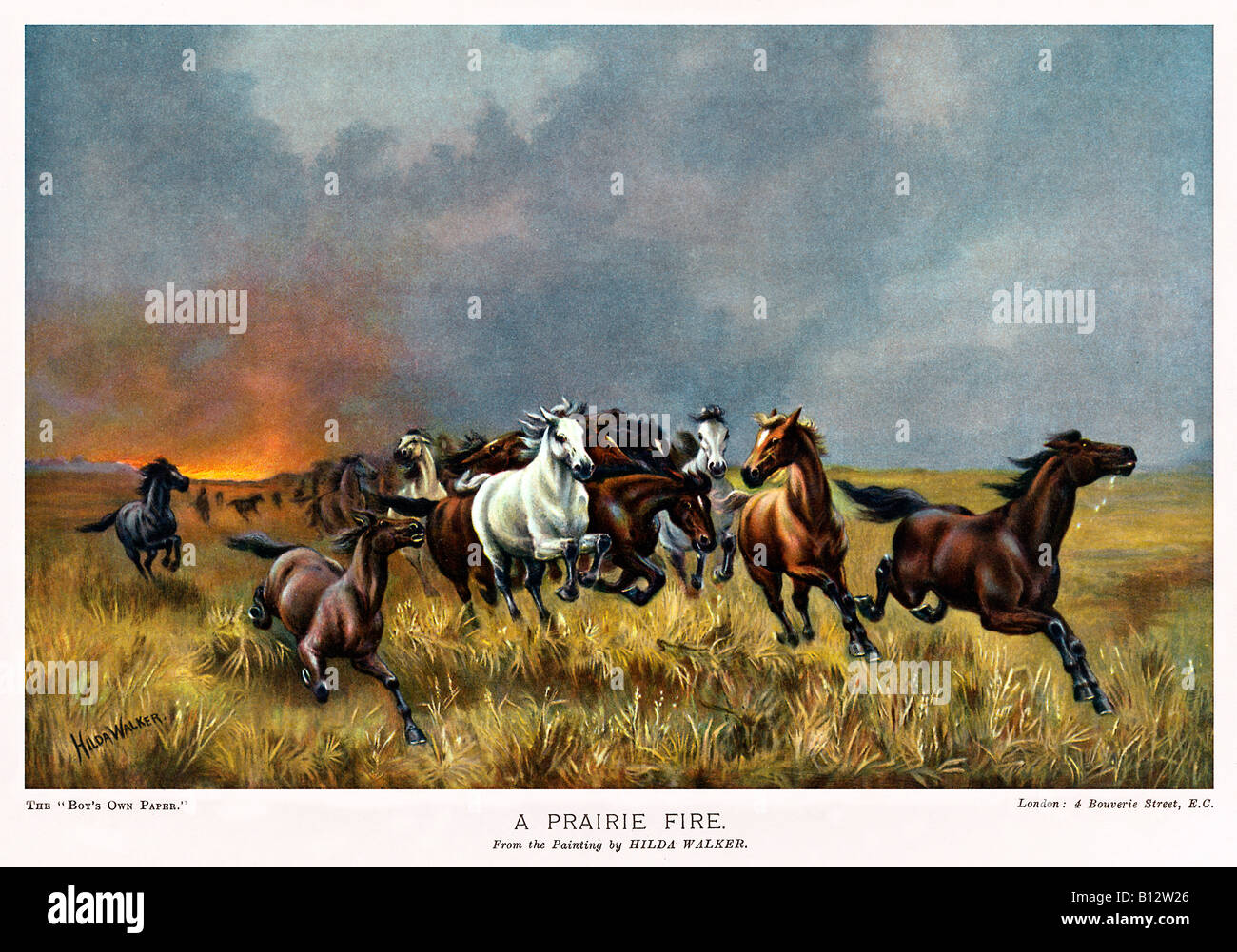 Prairie Fire Victorian Painting Of Wild Horses Running Away From A Stock Photo Alamy