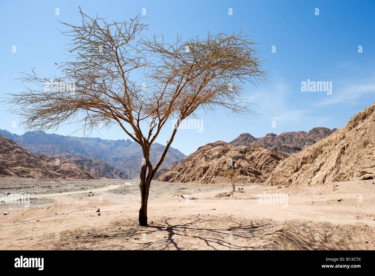 Sinai Desert between Dahab and Sharm el-Sheikh, South Sinai, Egypt - Stock Image