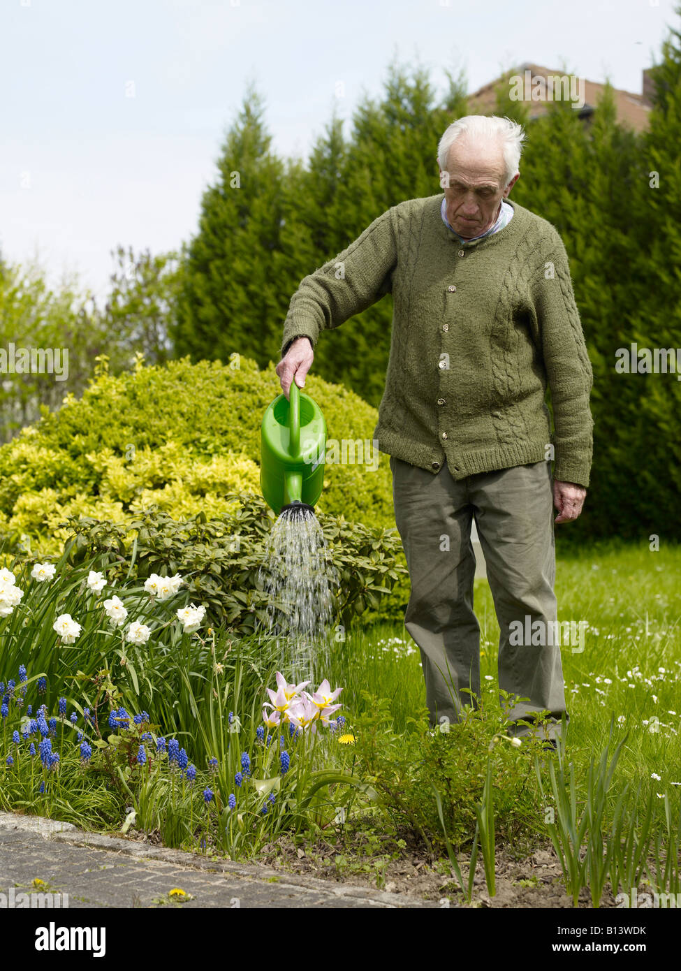 old man watering the flowers in his garden - Stock Image