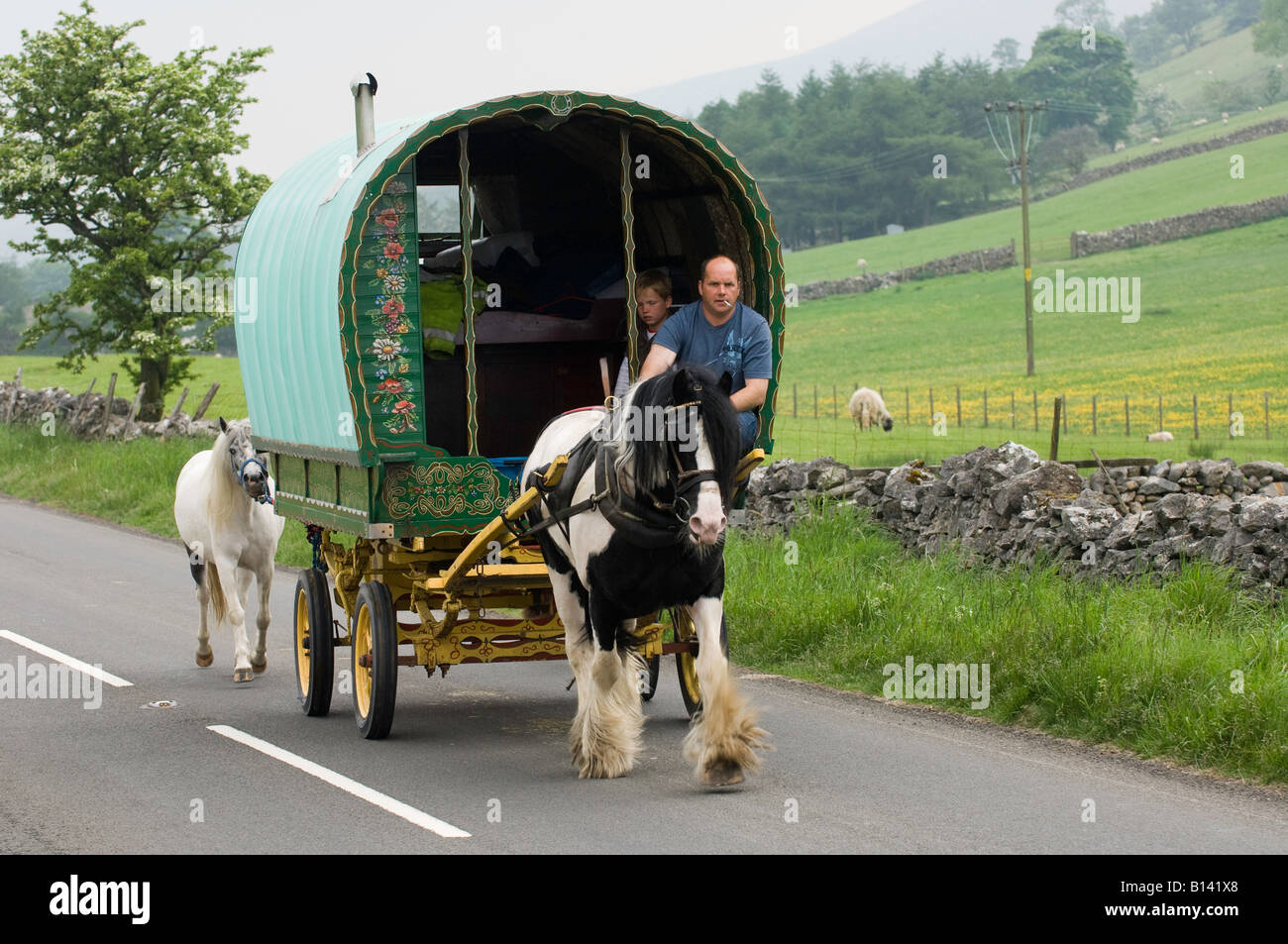 Horse drawn caravan on the road heading to the Appelby Horse Fair in Cumbria - Stock Image