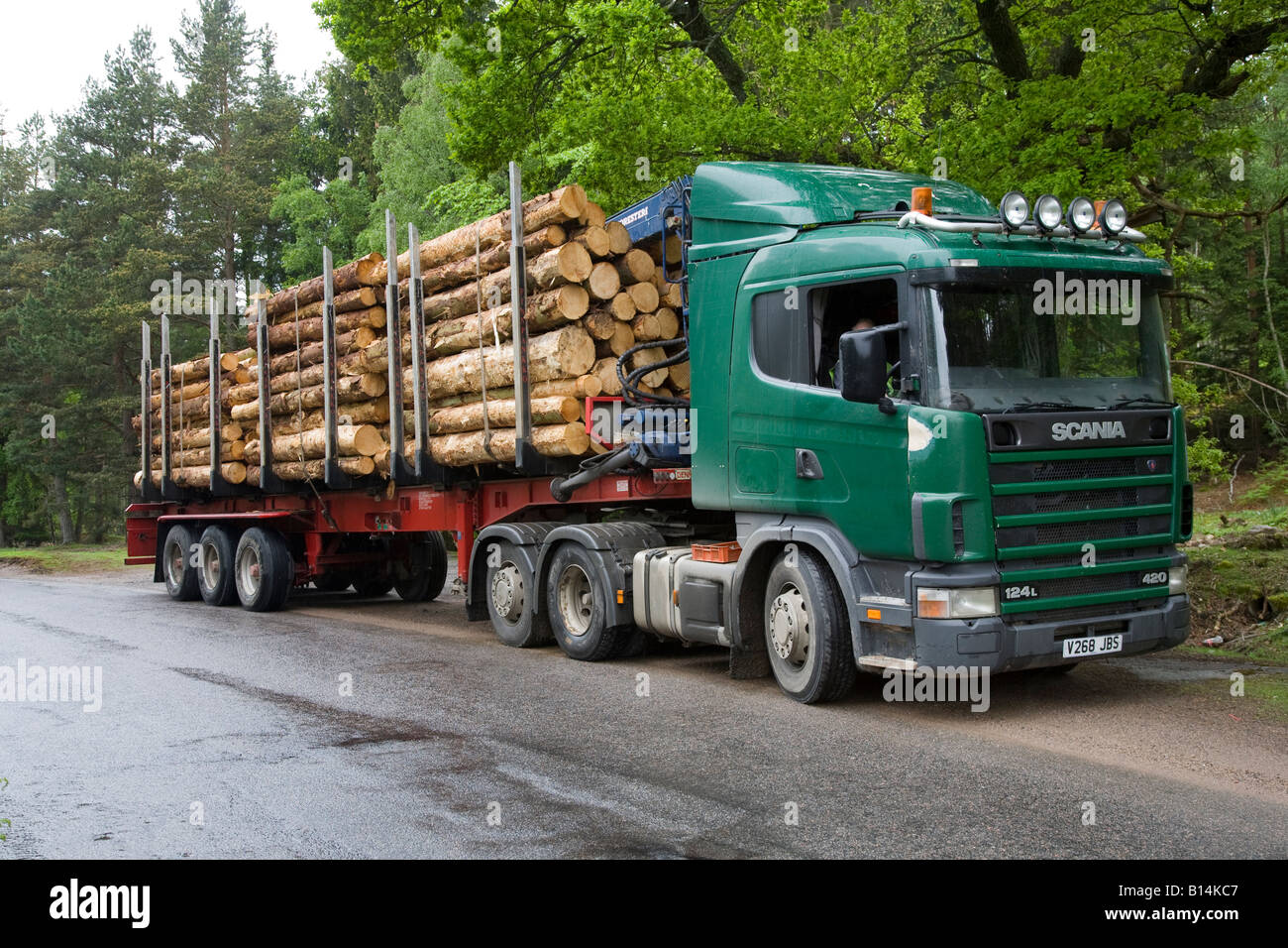 James Jones forest timber transport Scania vehicle logging truck, trucking & haulage trailers at Dinnet, Cairngorms - Stock Image