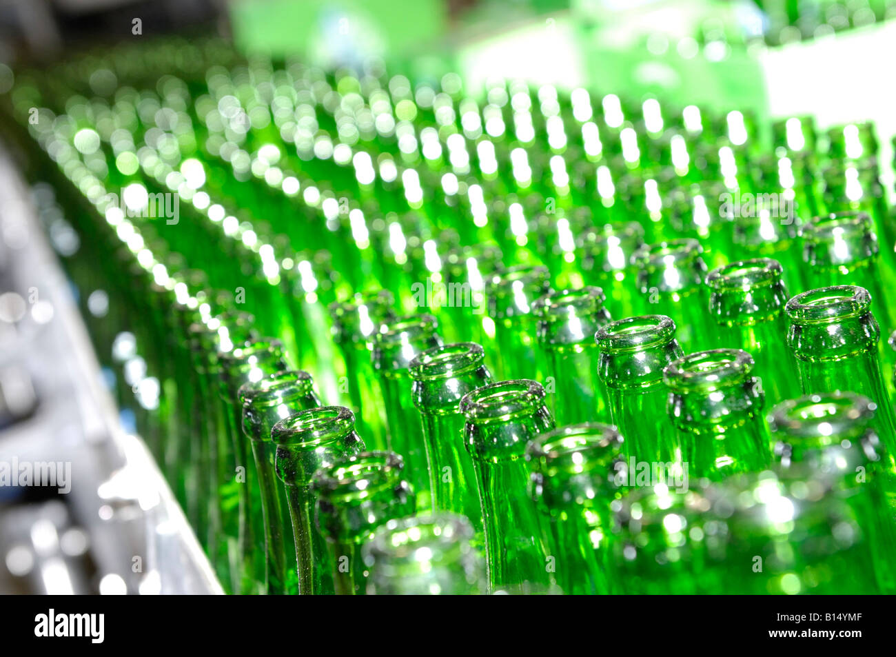 Green bottles - Stock Image