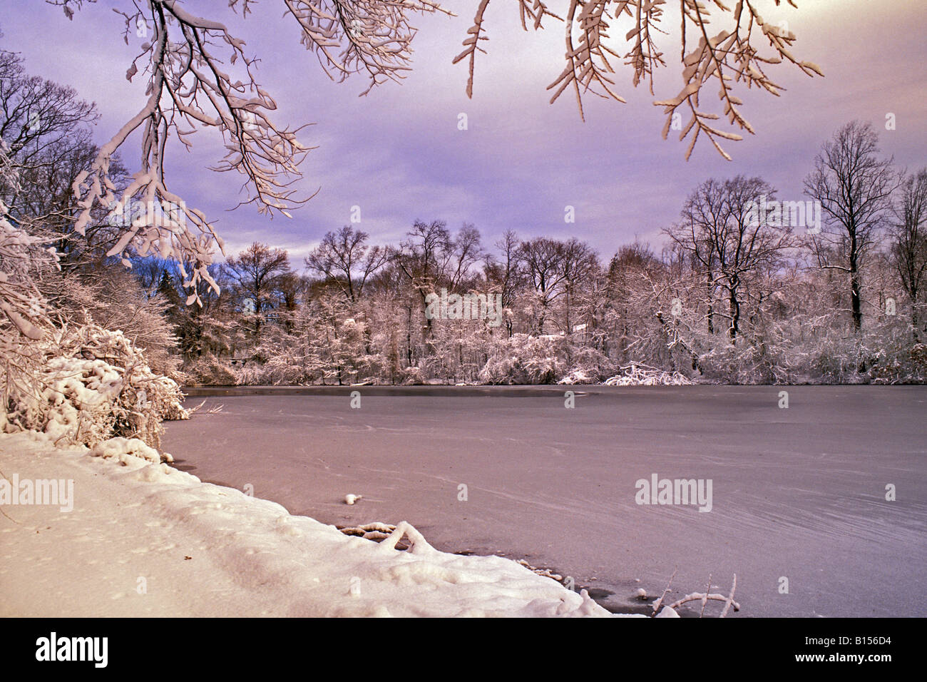 Painet Js0800 Winter Scene In New York Botanical Garden Bronx Ny