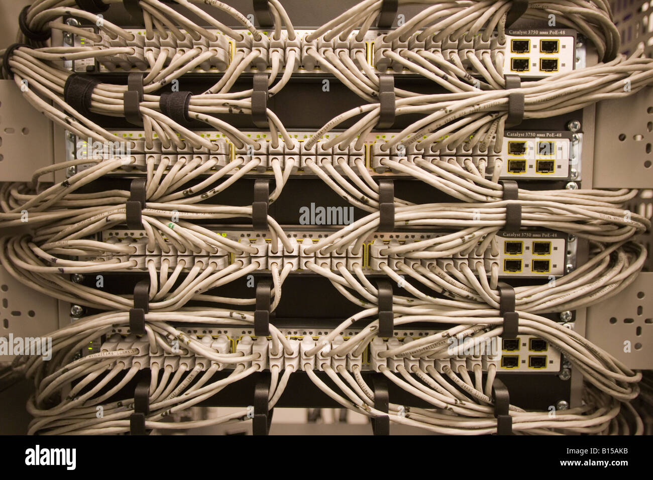 an array of ethernet cables are connected to a bank of cisco network  switches  -