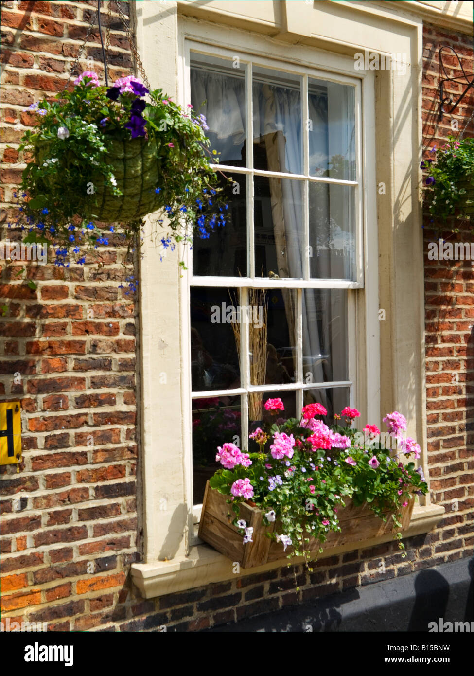 A window box and hanging basket on the window of a Georgian style hotel in Richmond North Yorkshire - Stock Image