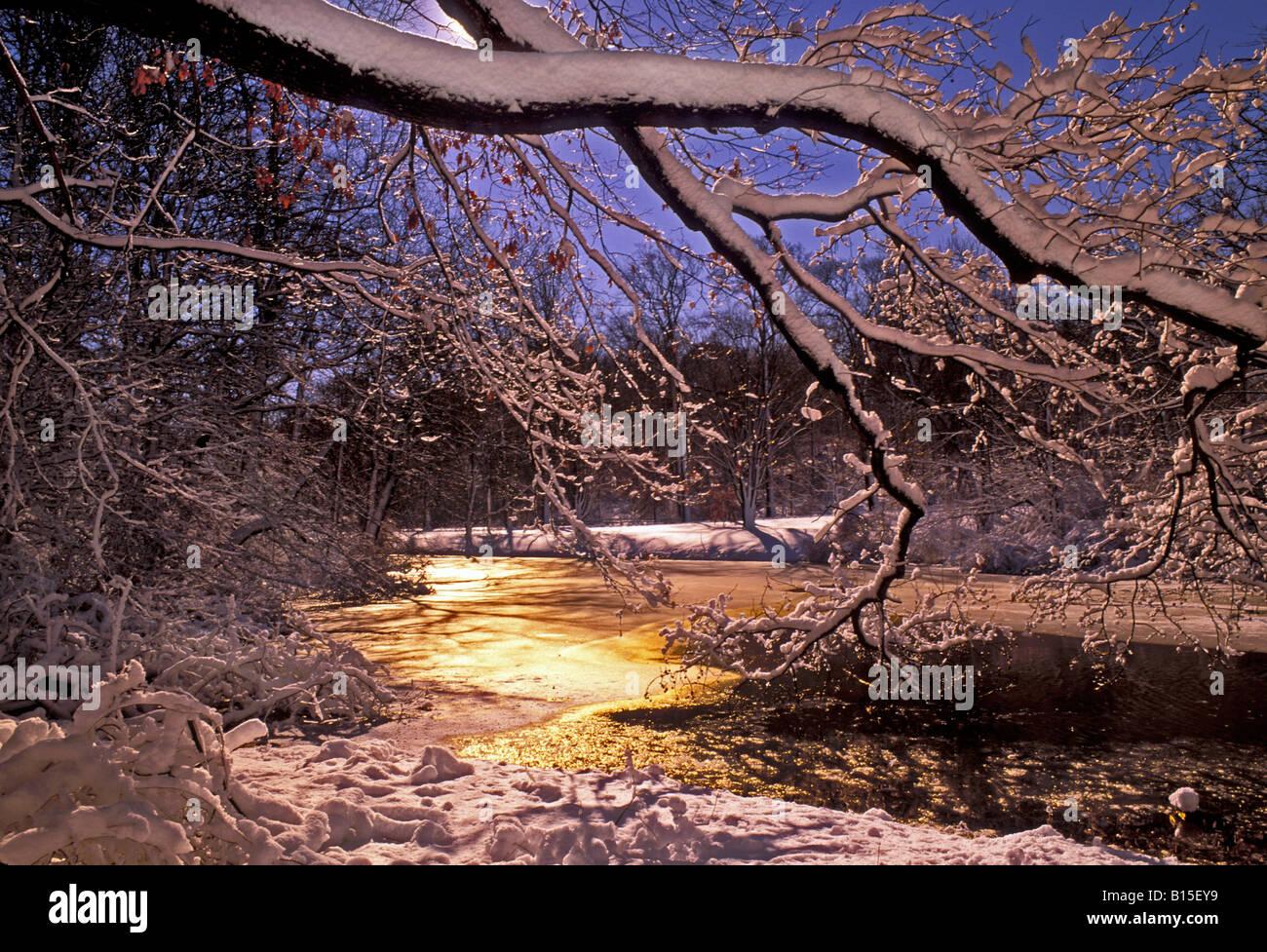 Painet Js0797 Winter Scene In New York Botanical Garden Bronx Ny