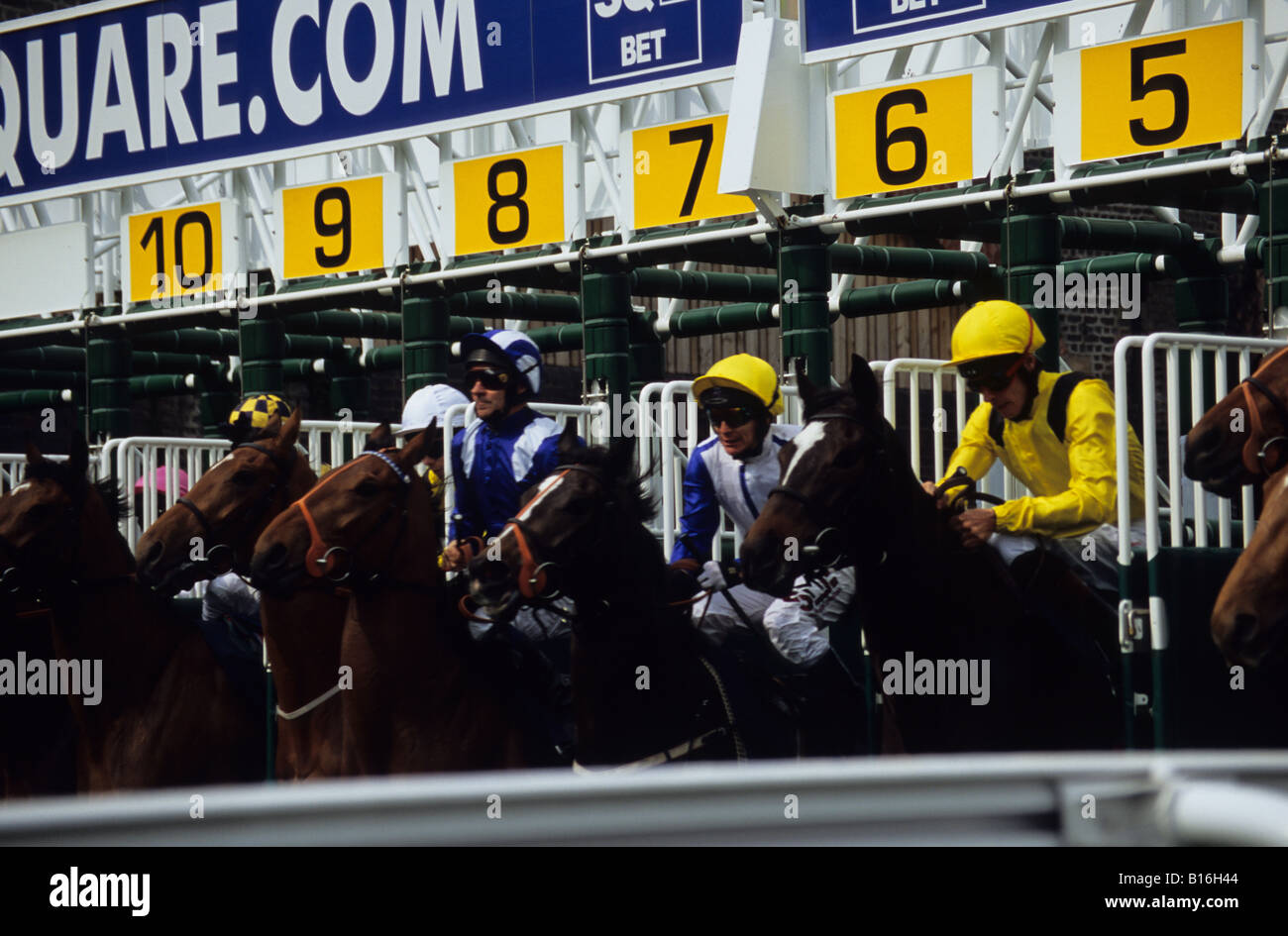 Horses Emerging From Stalls At The Start Of A Race At Chester Racecourse - Stock Image