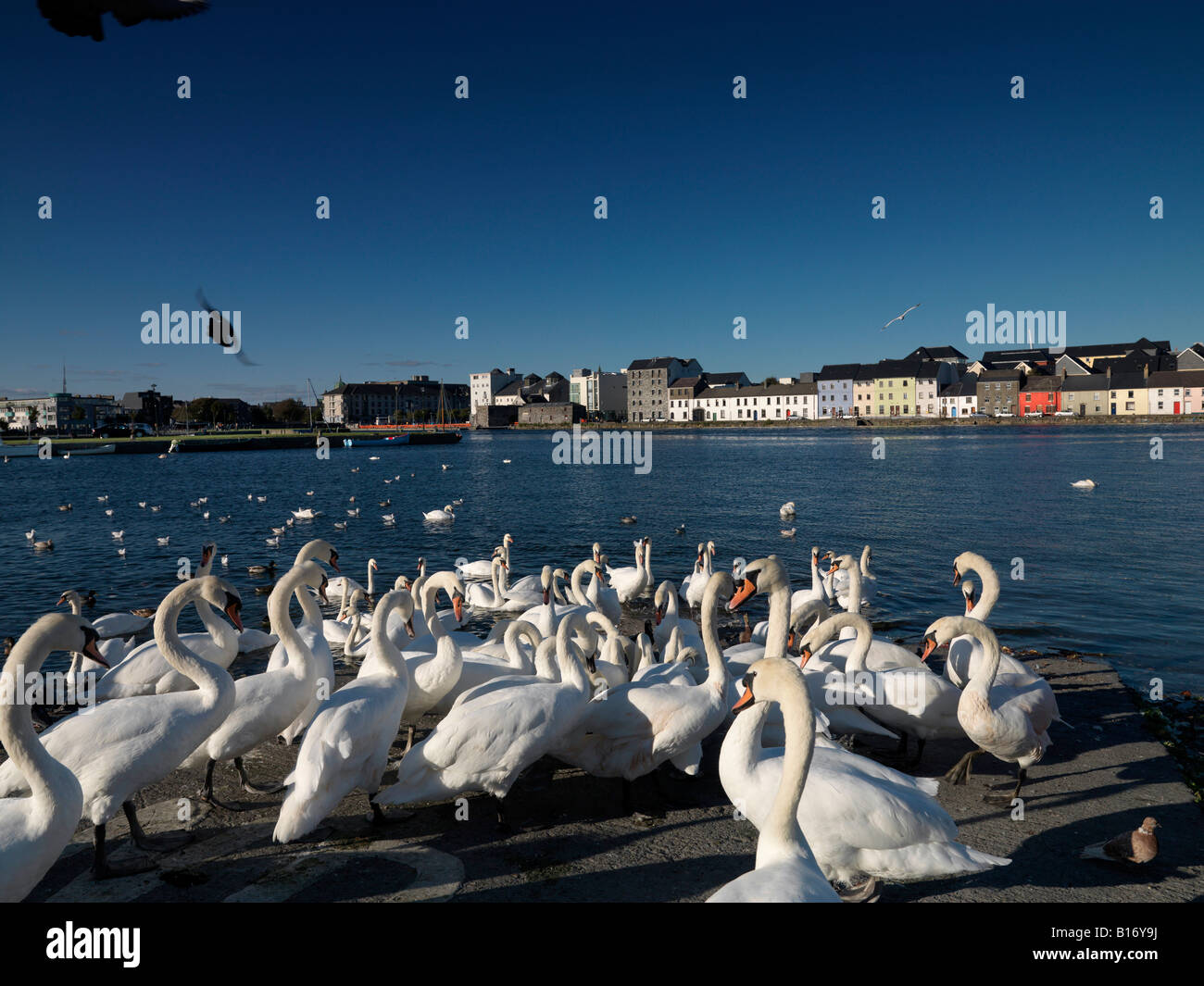 Galway City - Stock Image