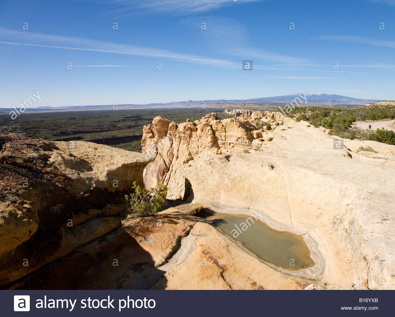 Water pool tinajas Sandstone Bluffs Overlook El Malpais National Monument New Mexico - Stock Image