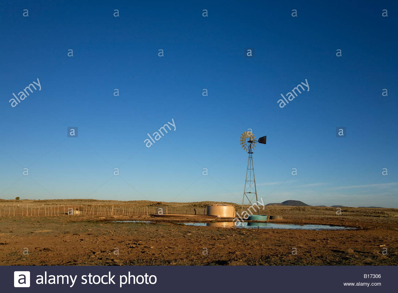 Windmill pumping water watering livestock cattle cows wind power - Stock Image