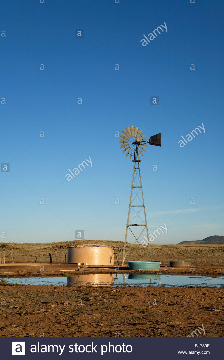 Windmill pumping water watering livestock cattle cows wind power vertical - Stock Image