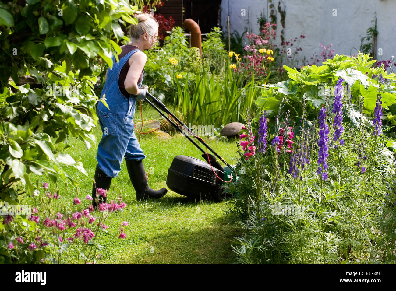 Woman Mowing Lawn in Summer - Stock Image