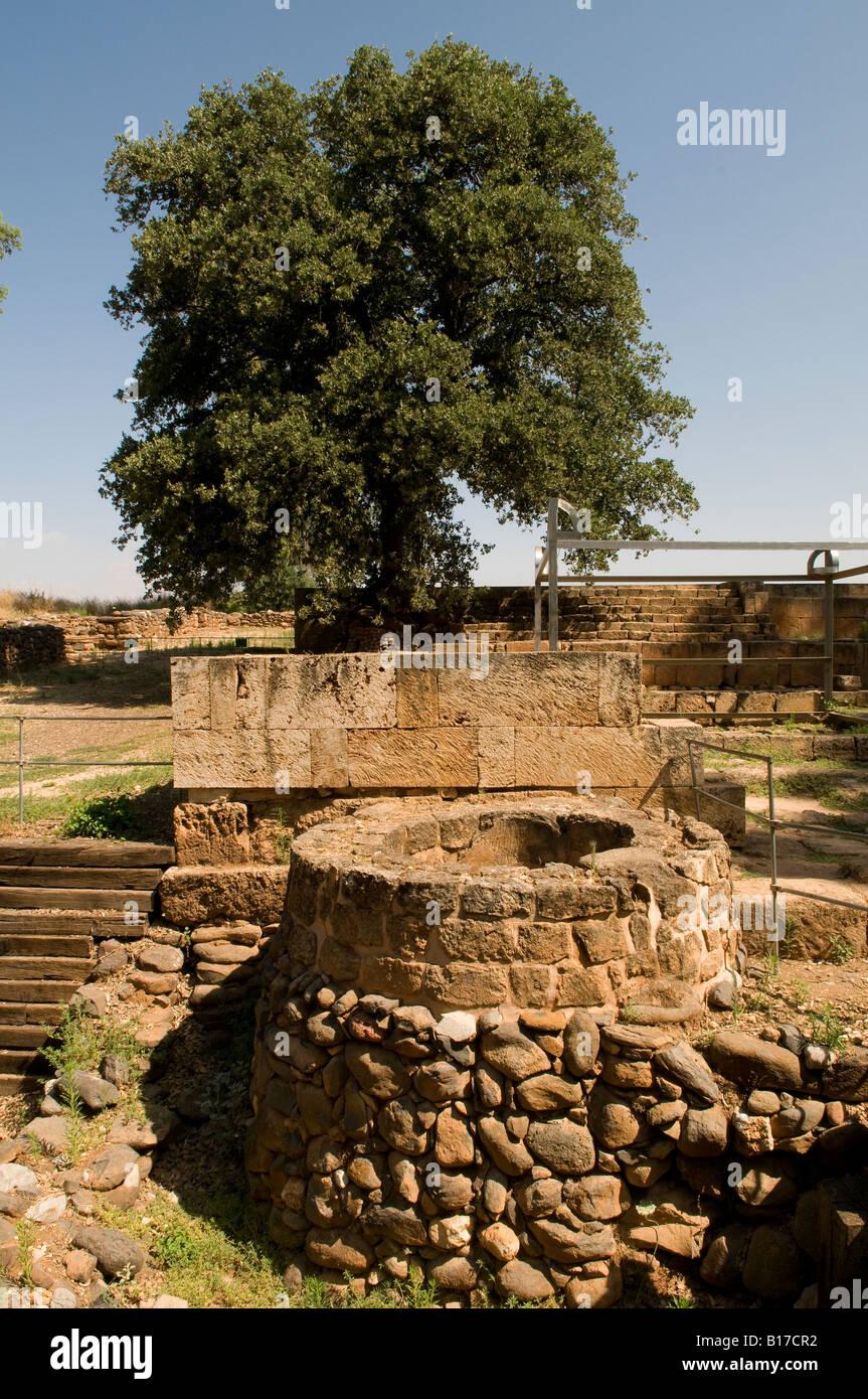 Ruins in Tel Dan, National Park northern Israel Stock ...