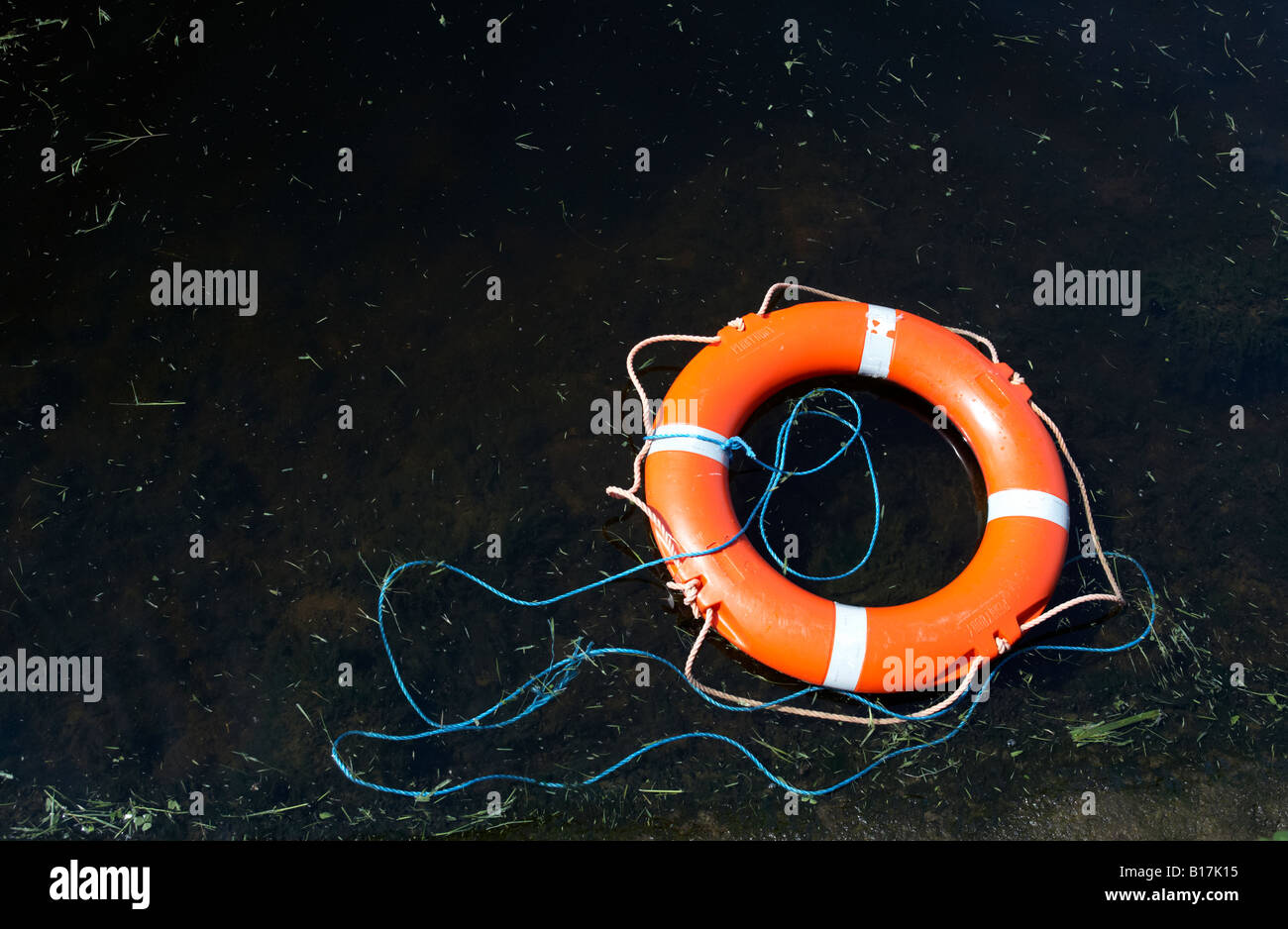 red lifebelt floating on dark lake water with cut grass discarded in county fermanagh - Stock Image