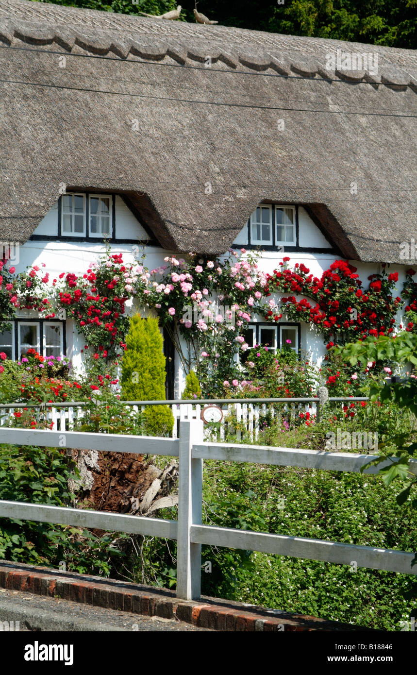 English country thatched cottage in Hampshire England UK - Stock Image