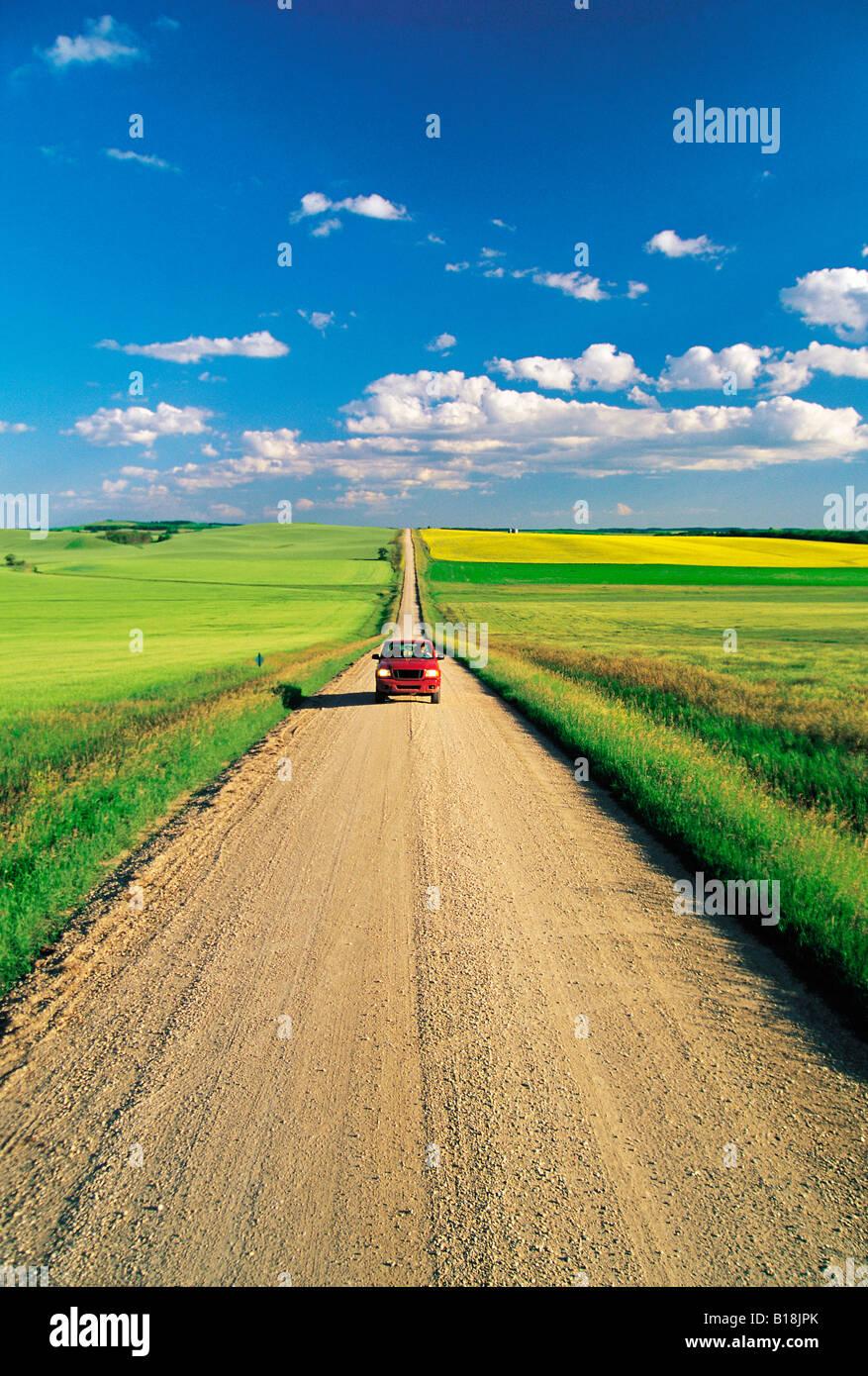 country road through farmland, Tiger Hills, Manitoba, Canada - Stock Image