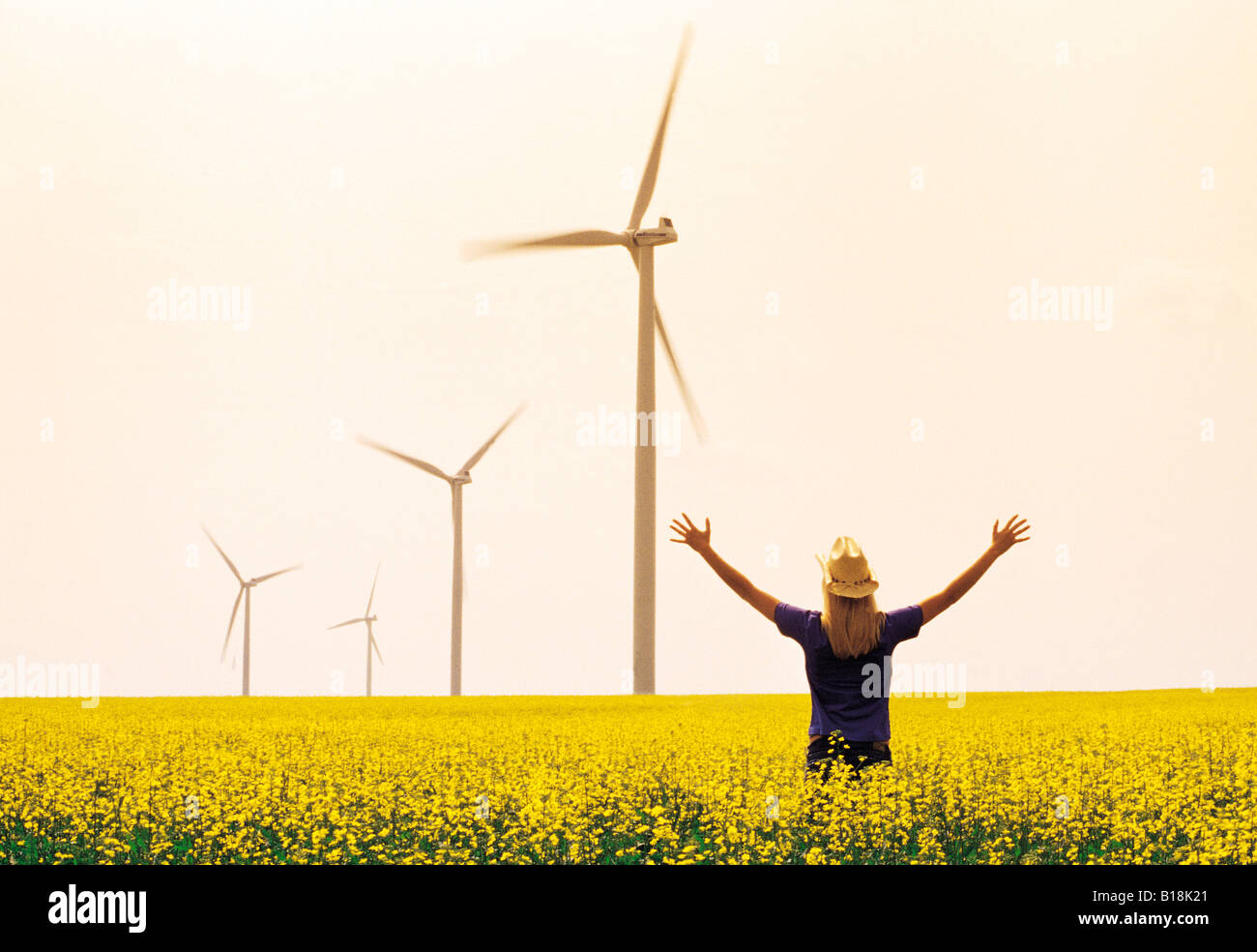 15 year old girl in canola field with wind turbines in the background, St. Leon, Manitoba, Canada - Stock Image
