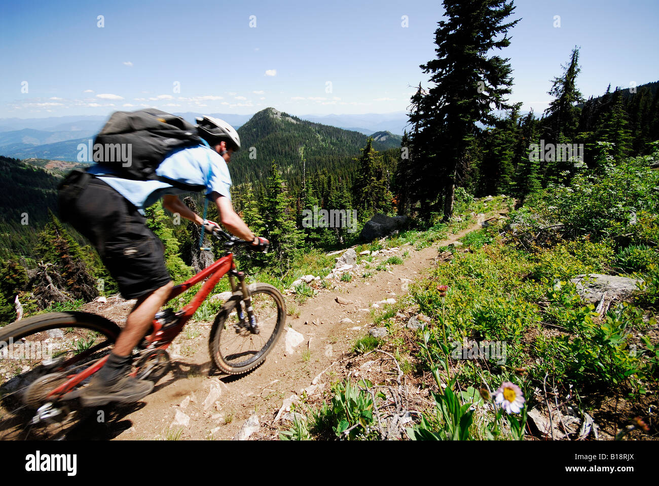 Man bikes the Seven Summits trail, Rossland, British Columbia, Canada. - Stock Image