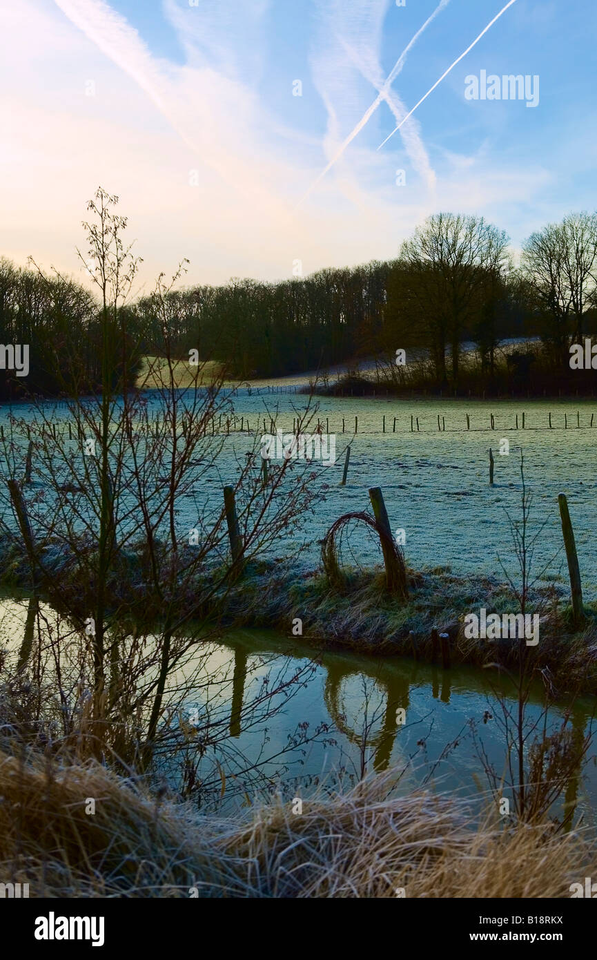 meadow brook on a winterly morning - Stock Image