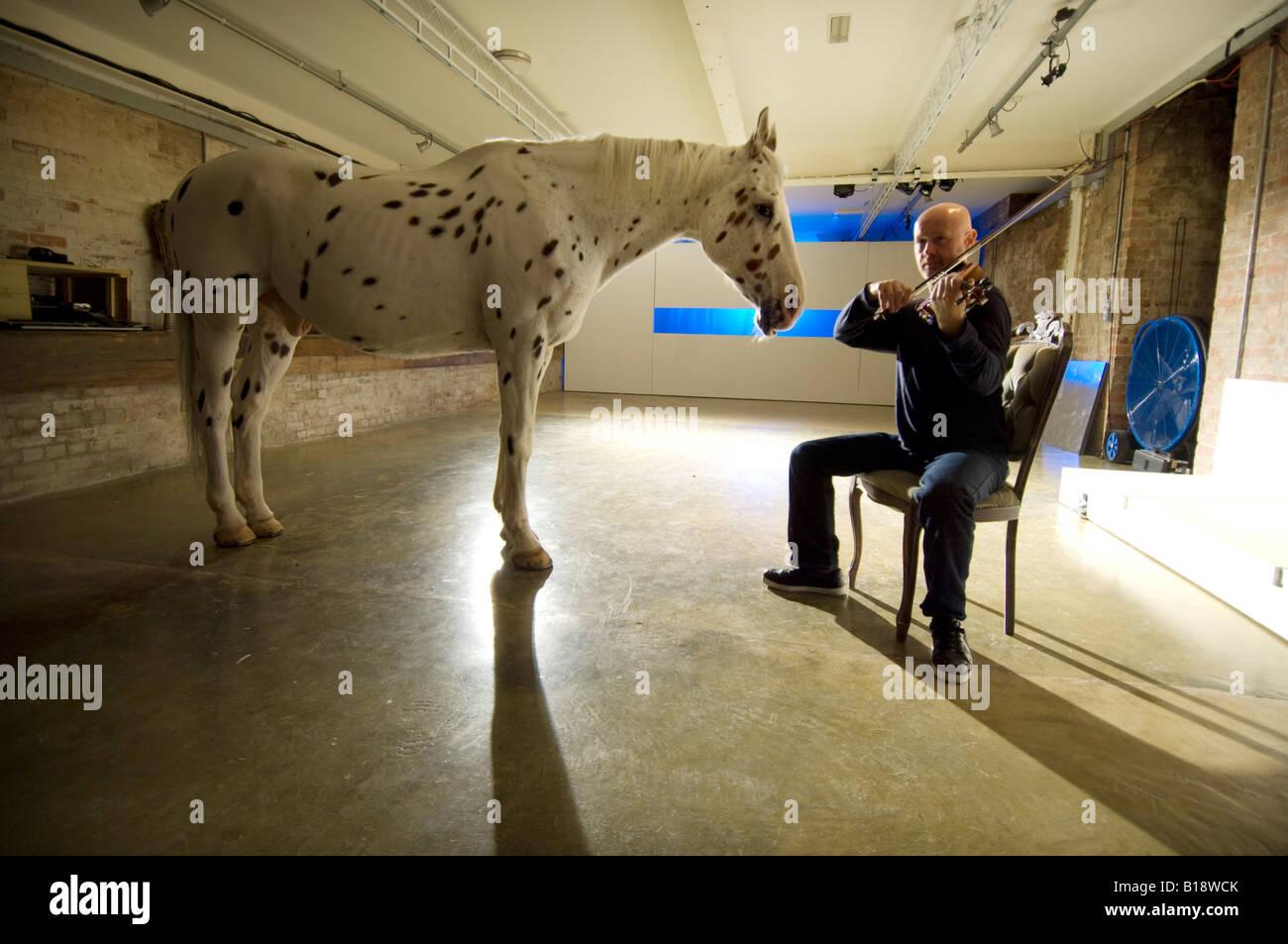 Man serenades horse with violin in theatre as part of Brighton Festival - Stock Image