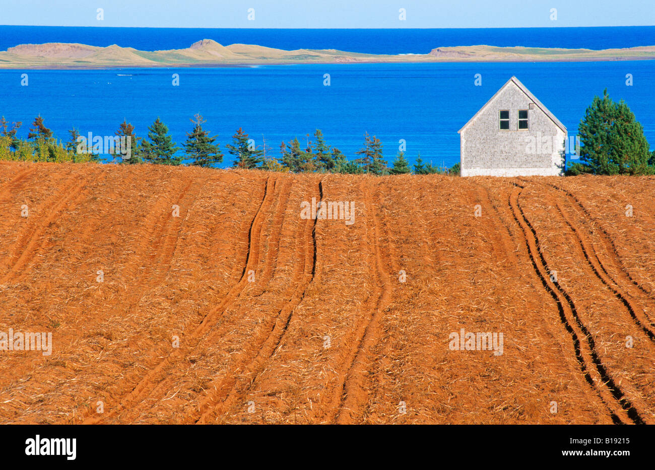 Field, Farm and Sea near French River, Prince Edward Island, Canada - Stock Image