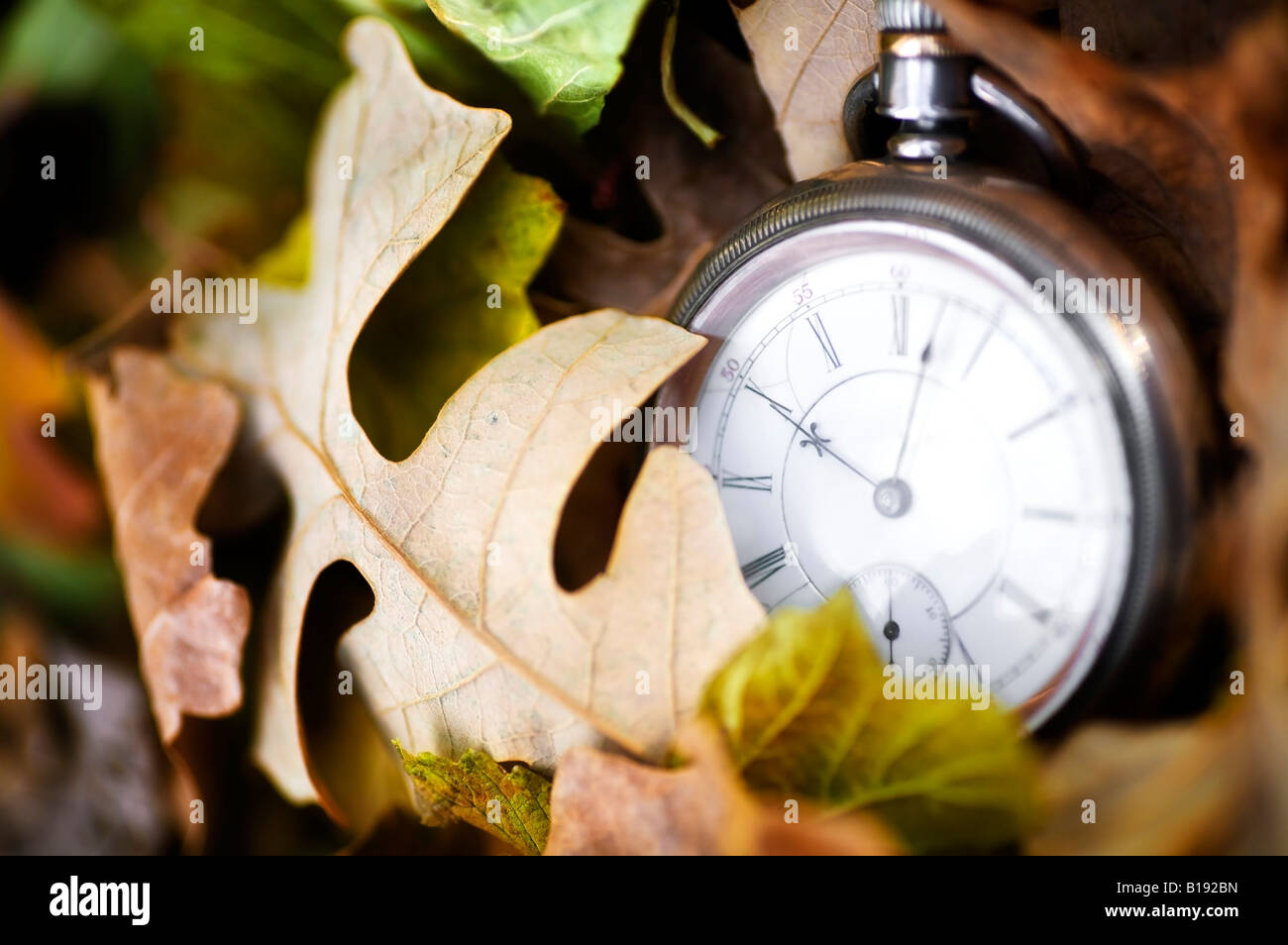 Time passing - Stock Image