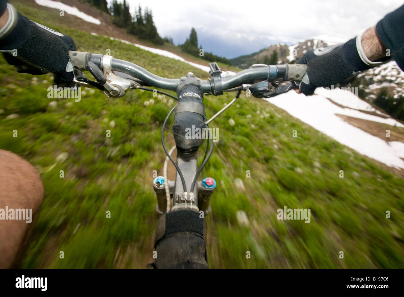 Single track, mountain biking in the southern chilcotin mountains.  British Columbia, Canada - Stock Image