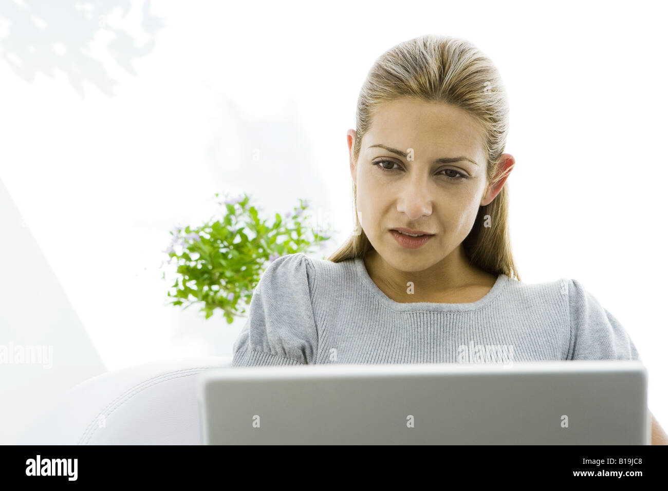 Woman intently looking at laptop, cropped - Stock Image