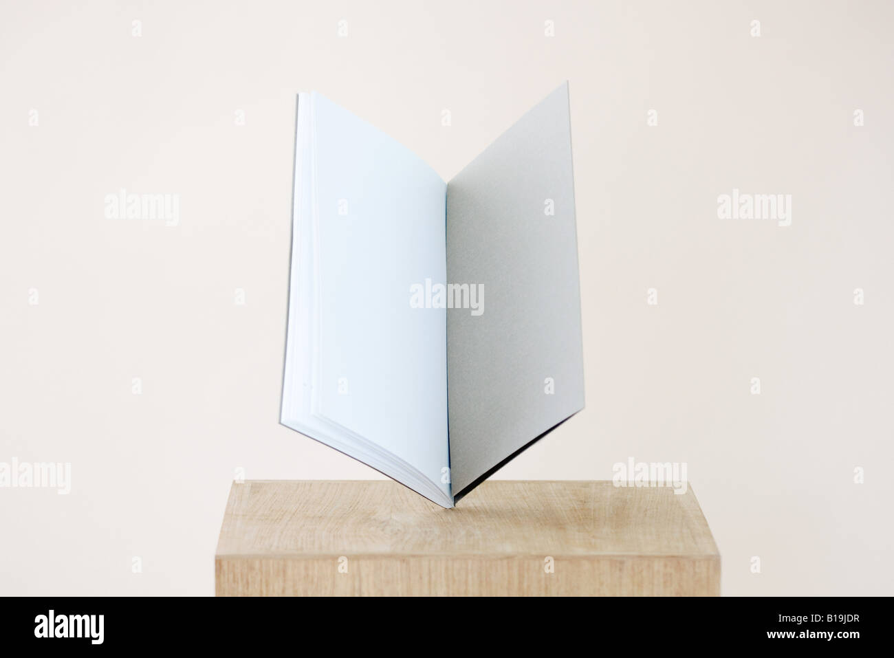 Open book with blank pages balancing on pedestal - Stock Image