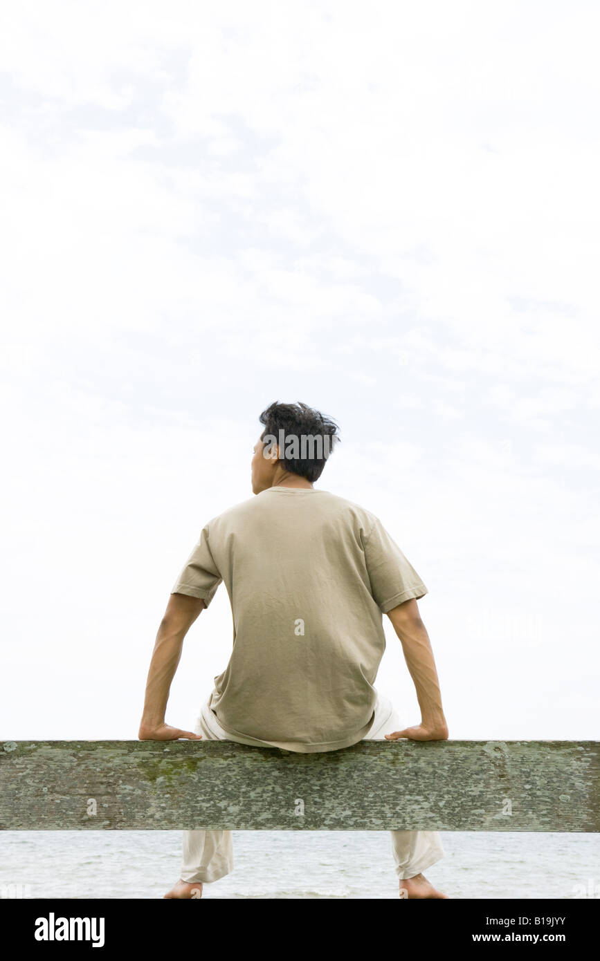 Man sitting on rail, facing ocean, rear view - Stock Image