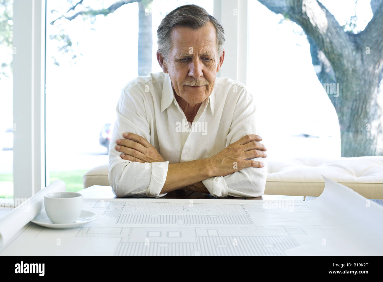 Adult architect adults blueprint arms stock photos adult architect man looking at blueprint coffee cup nearby stock image malvernweather Choice Image
