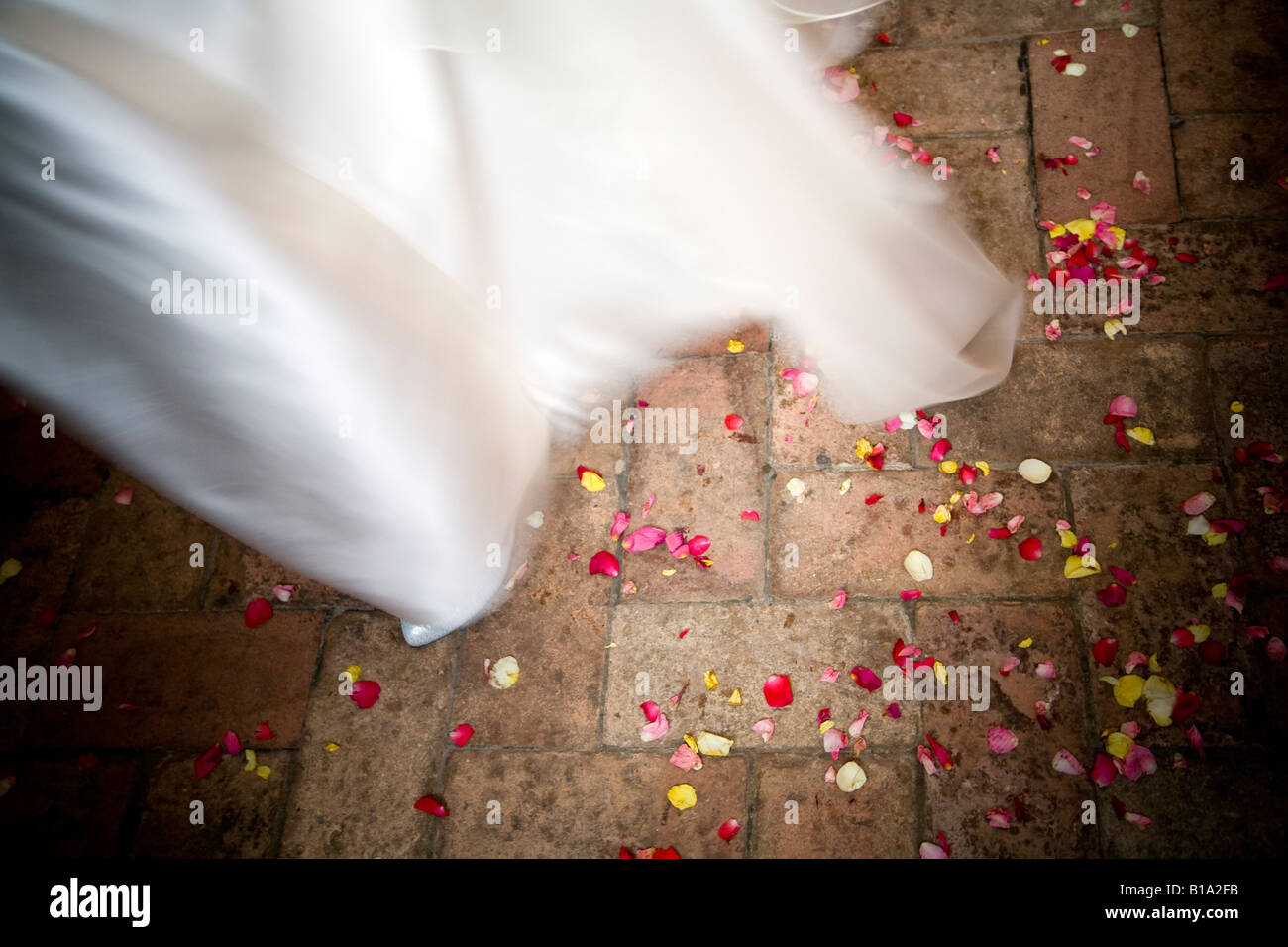 Petals and bridal dress Stock Photo