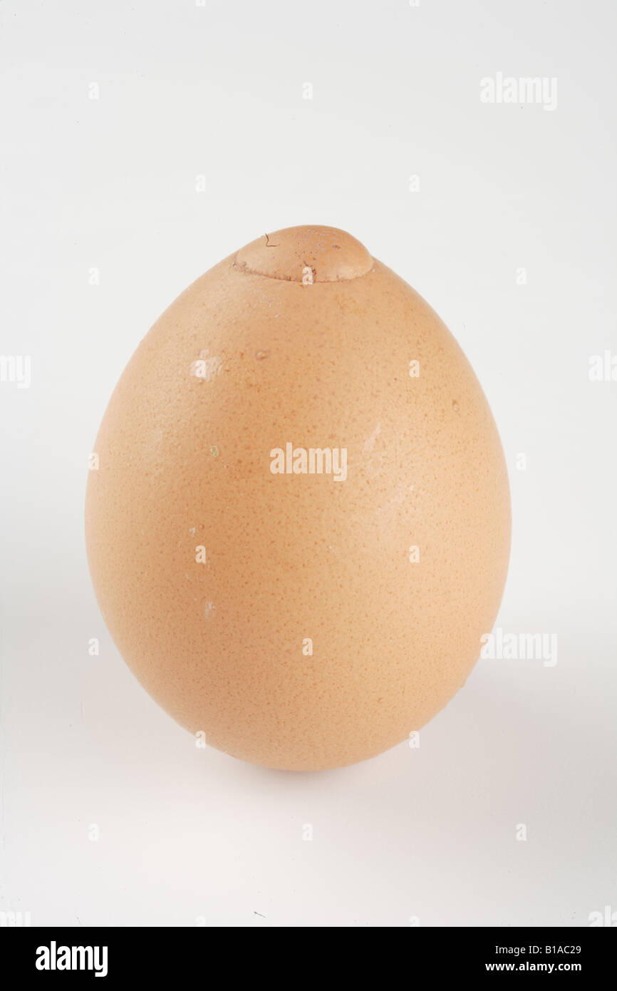 An egg (vertical) - Stock Image