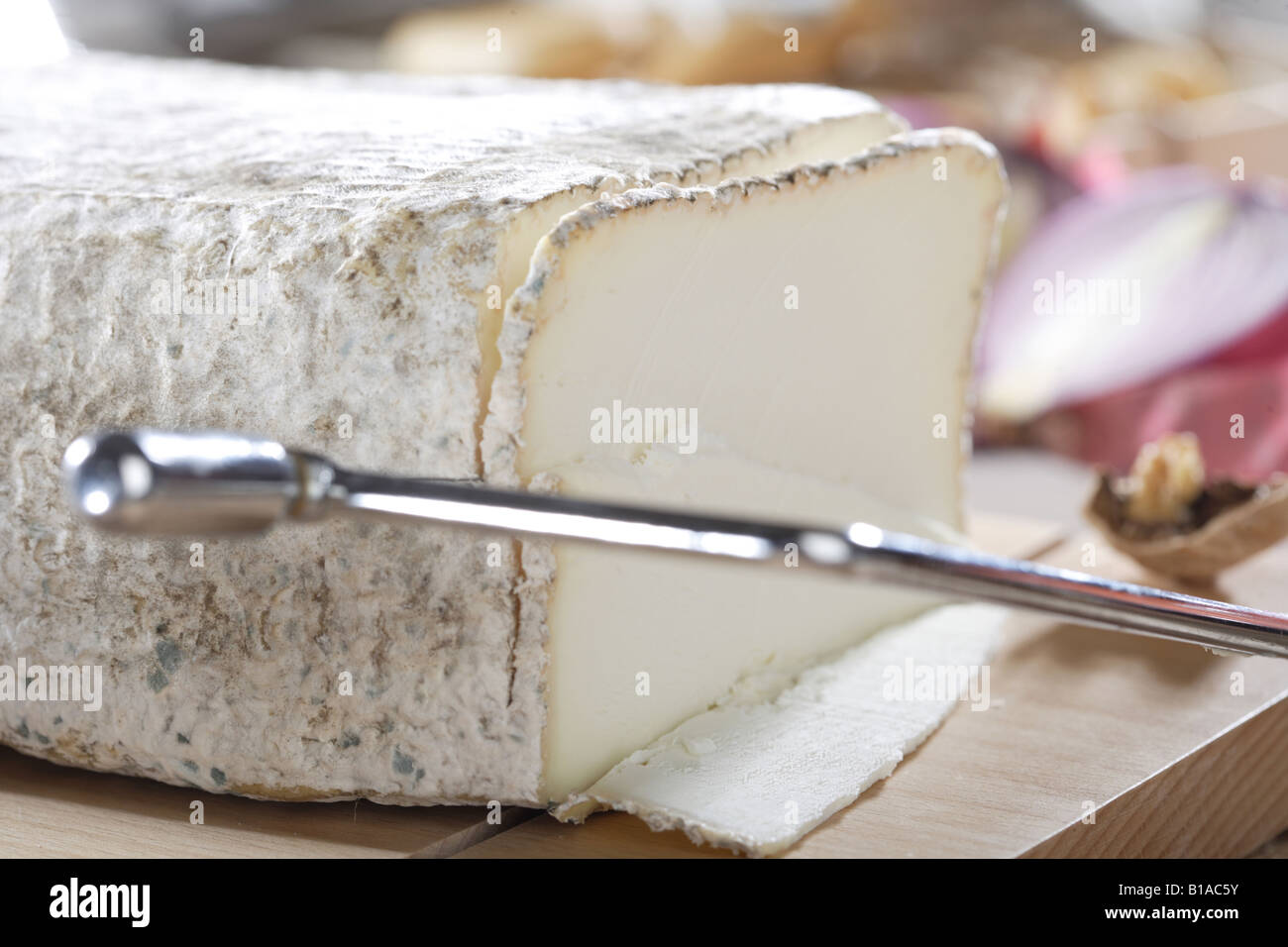 Cutting goat cheese with a cheese slicer (detail) - Stock Image