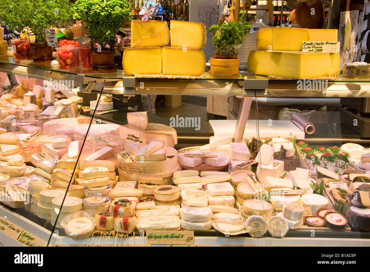 Cheeses on sale in an indoor market hall in Stuttgart, Germany. Numerous gourmet cheeses are offered. - Stock Image