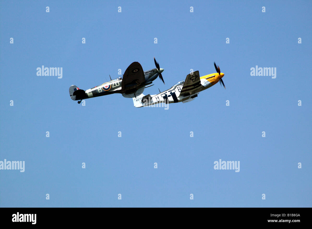 North American P-51 D Mustang Ferocious Frankie and Vickers Supermarine Spitfire MH 434 winning the best team trophy Stock Photo